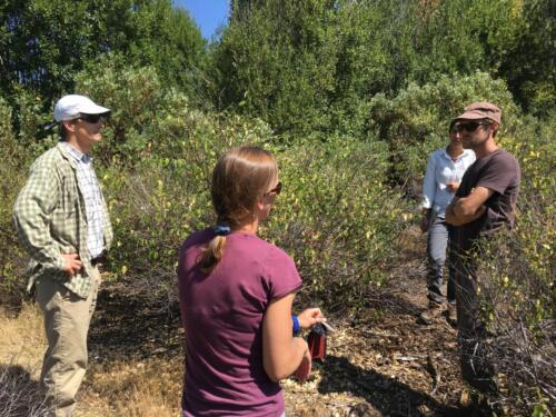 Choosing field sites